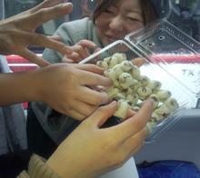 本気でやるから楽しい毎日 『ケイ太のドタバタ奮闘記2』-DSC_0510.jpg