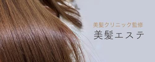 美髪エステ
